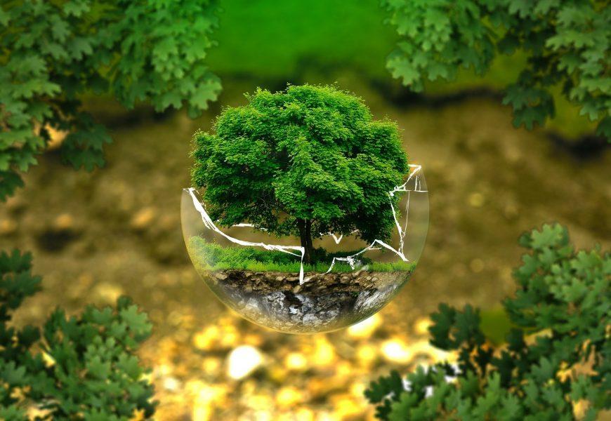Grün, Nachhaltigkeit,
